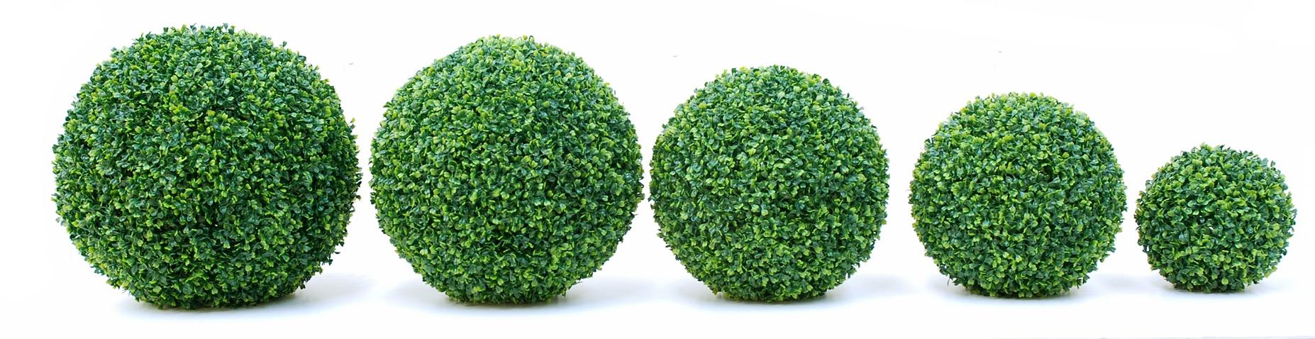 boxwood_balls_02.jpg