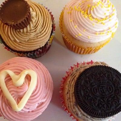 Lauren Dowdle's Cupcakes