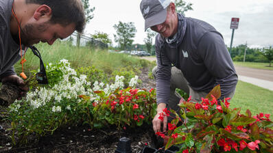 irrigation and seasonal color are profitable landscape services