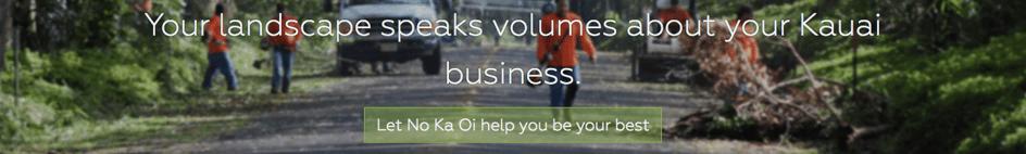 No Ka Oi Landscape homepage headline on their website.