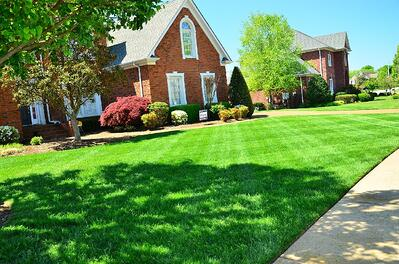 Discover why it's not necessary to hire a local marketing agency for your lawn care and landscaping business.