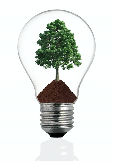 Our Best Marketing Ideas for Tree Service Companies