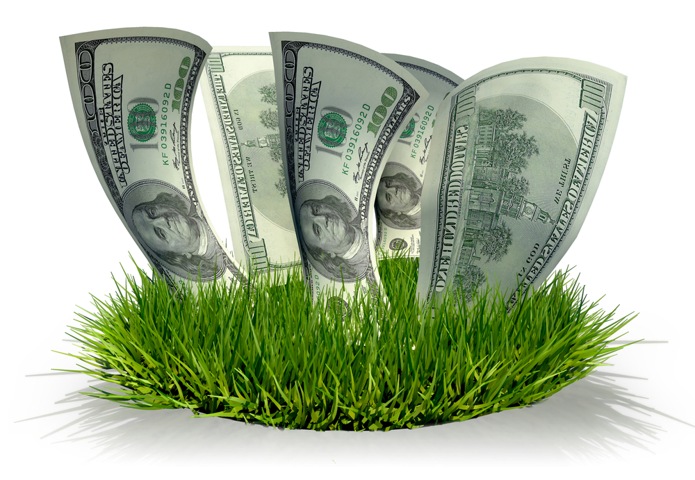 4 Critical Steps After Buying a Lawn Care Business or Landscaping Company