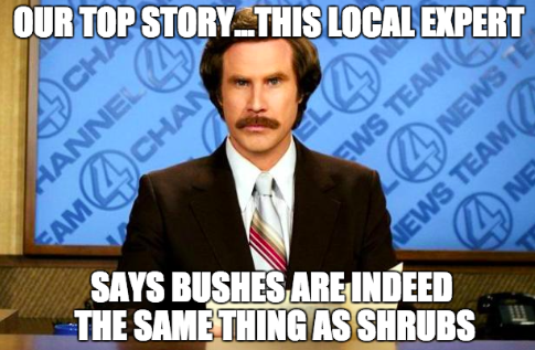 This Just In! 7 Tips to Get Featured in Local News Media