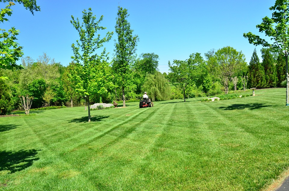 6 On-Page SEO Tips For Your Lawn Care And Landscaping Website